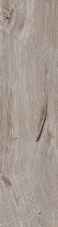 BRICCOLE WOOD GREY 225x900