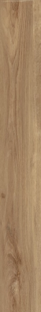 ESSENZA  OLIVA 150x900