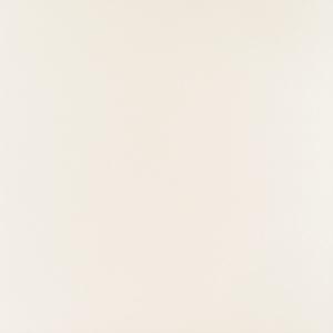 ELEMENTARY WHITE 598x598